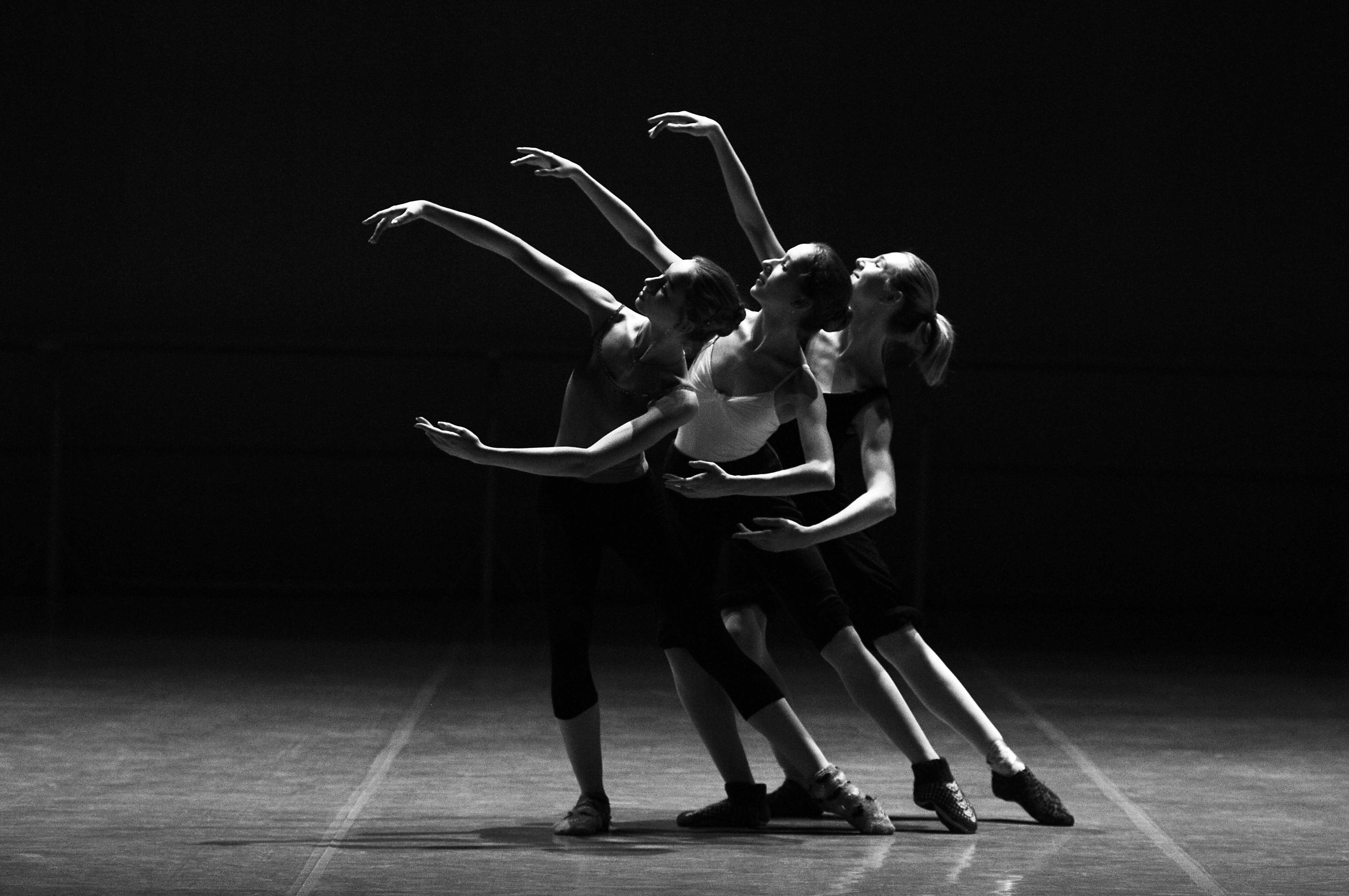 adult-art-ballerina-209948